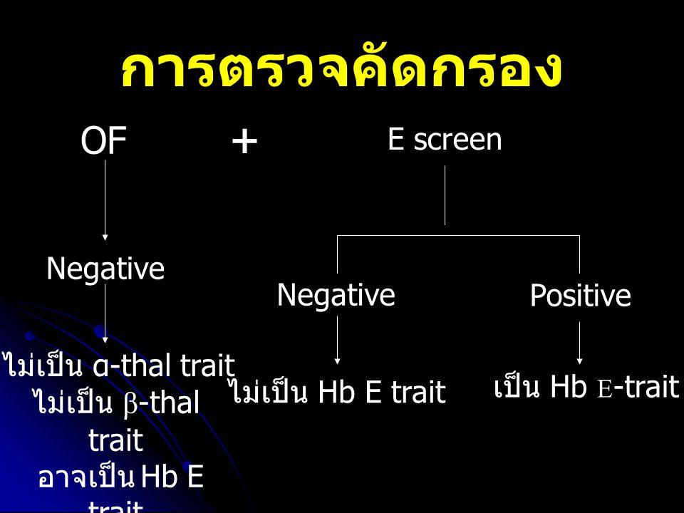 การตรวจคัดกรอง OF Negative ไม่เป็น Hb E trait Positive เป็น Hb E -trait Negative ไม่เป็น α-thal trait ไม่เป็น β -thal trait อาจเป็น Hb E trait E scree