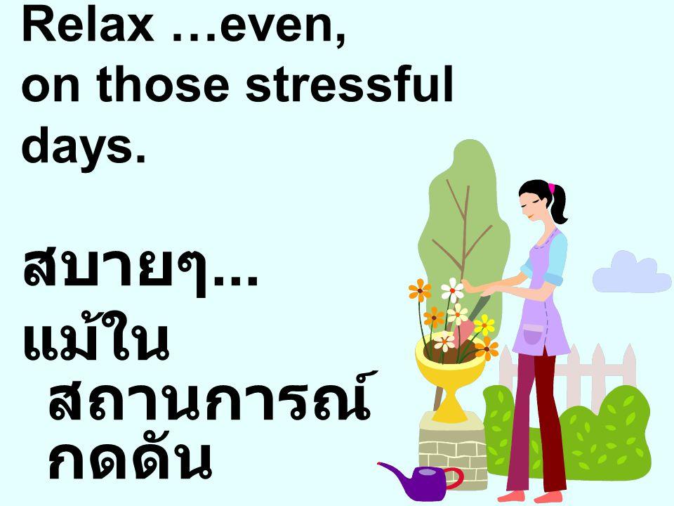 Relax …even, on those stressful days. สบายๆ... แม้ใน สถานการณ์ กดดัน