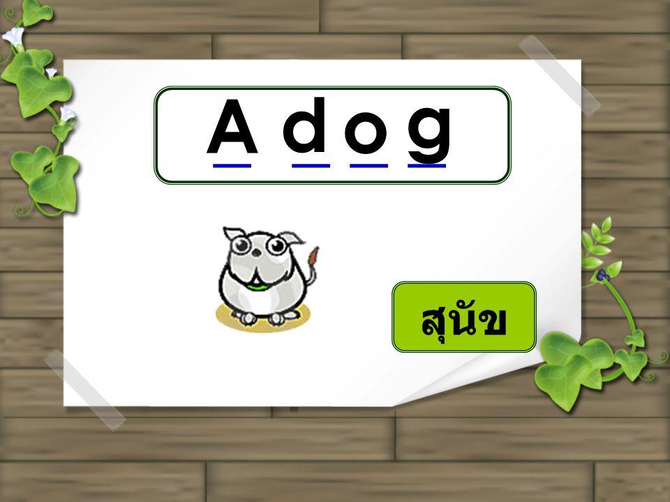 _ _ A d o g สุนัข