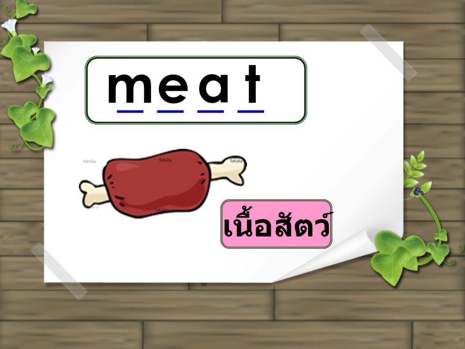 me a t _ _ _ _ เนื้อสัตว์