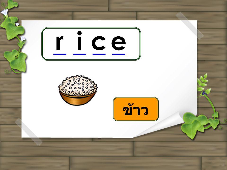 ri c e _ _ _ _ ข้าว
