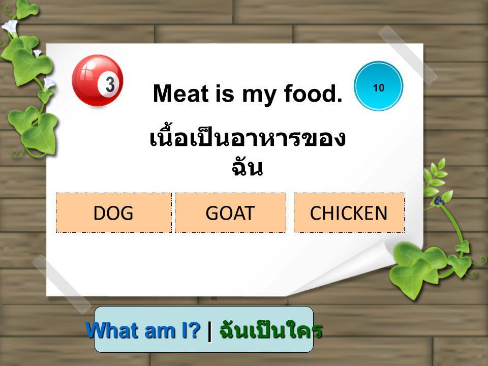 What am I? | ฉันเป็นใคร Meat is my food. เนื้อเป็นอาหารของ ฉัน 10 DOGGOATCHICKEN