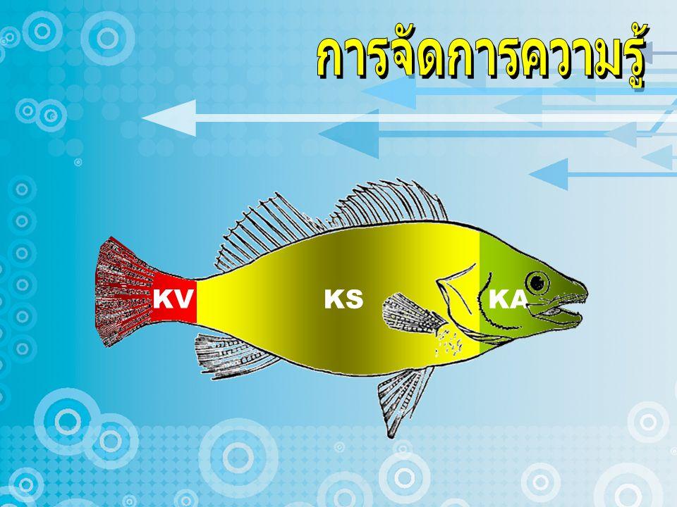 KV KS KA
