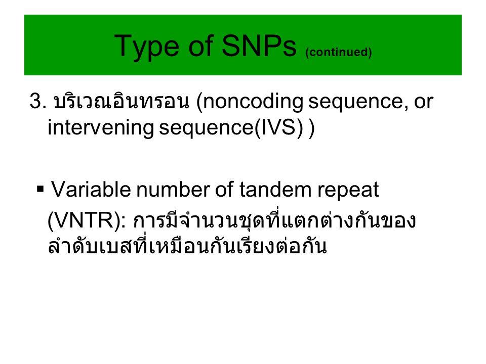 3. บริเวณอินทรอน (noncoding sequence, or intervening sequence(IVS) )  Variable number of tandem repeat (VNTR): การมีจำนวนชุดที่แตกต่างกันของ ลำดับเบส