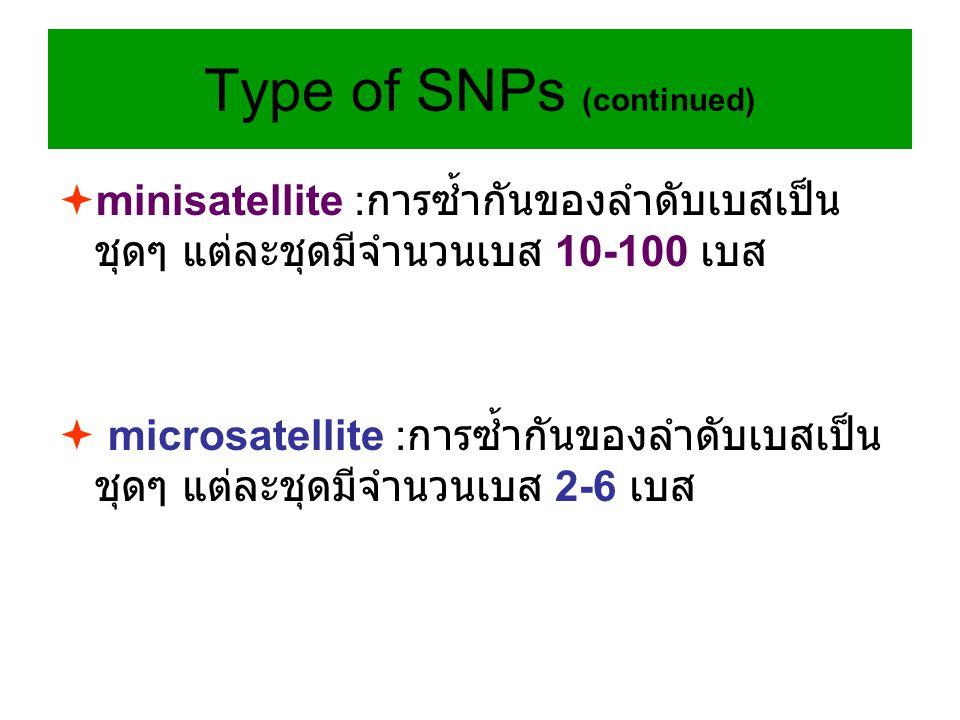  minisatellite : การซ้ำกันของลำดับเบสเป็น ชุดๆ แต่ละชุดมีจำนวนเบส 10-100 เบส  microsatellite : การซ้ำกันของลำดับเบสเป็น ชุดๆ แต่ละชุดมีจำนวนเบส 2-6