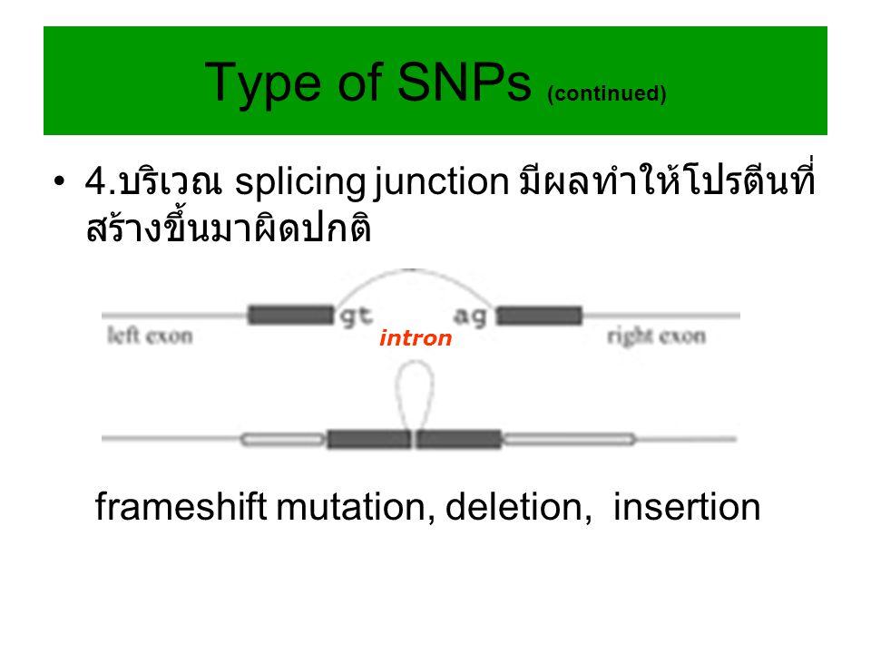 4. บริเวณ splicing junction มีผลทำให้โปรตีนที่ สร้างขึ้นมาผิดปกติ frameshift mutation, deletion, insertion intron Type of SNPs (continued)