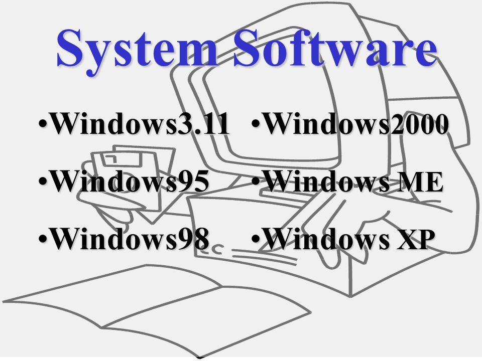 Software System SoftwareSystem Software Application SoftwareApplication Software