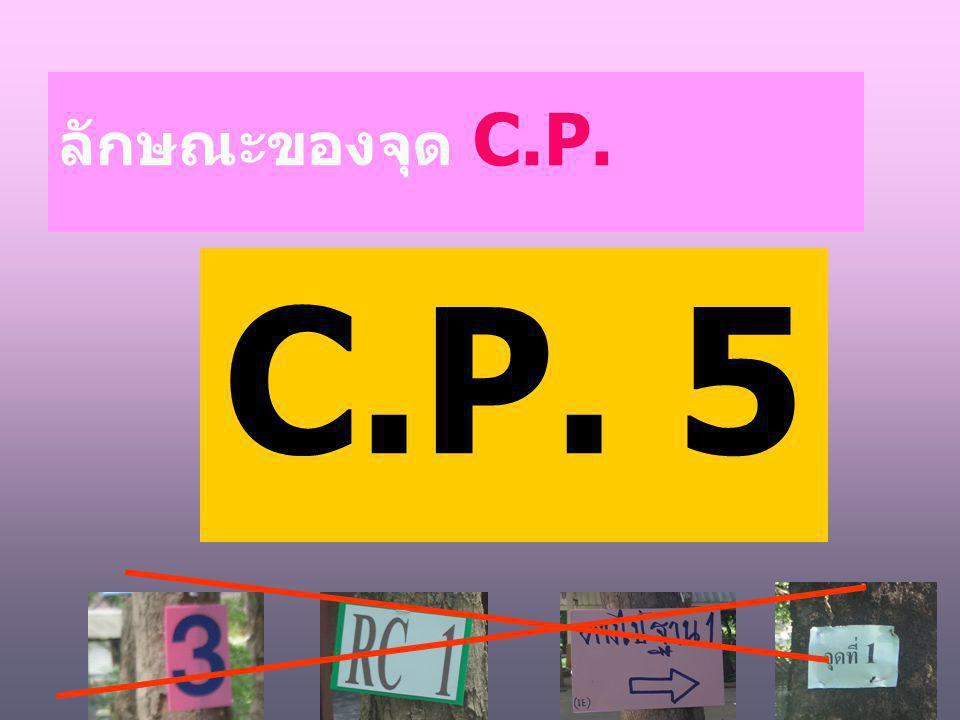 ลักษณะของจุด C.P. C.P. 5