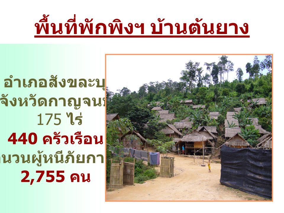พื้นที่พักพิงฯ บ้านต้นยาง อำเภอสังขละบุรี จังหวัดกาญจนบุรี 175 ไร่ 440 ครัวเรือน จำนวนผู้หนีภัยการสู้รบ 2,755 คน
