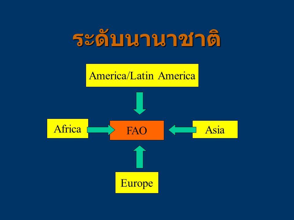 FAO Europe Africa Asia America/Latin America ระดับนานาชาติ