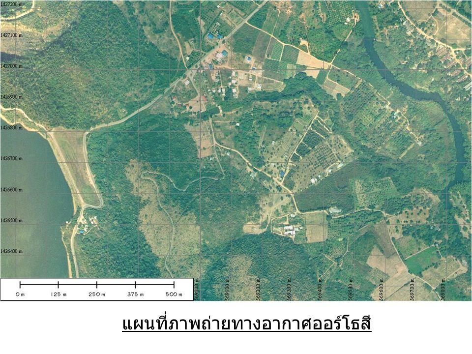 แผนที่ภาพถ่ายทางอากาศออร์โธสี