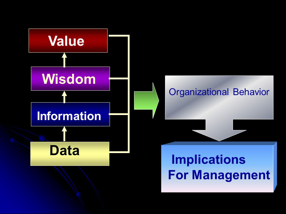 Value Wisdom Information Implications For Management Data Organizational Behavior