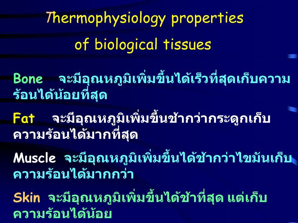 Thermophysiology properties of biological tissues Bone จะมีอุณหภูมิเพิ่มขึ้นได้เร็วที่สุดเก็บความ ร้อนได้น้อยที่สุด Fat จะมีอุณหภูมิเพิ่มขึ้นช้ากว่ากร