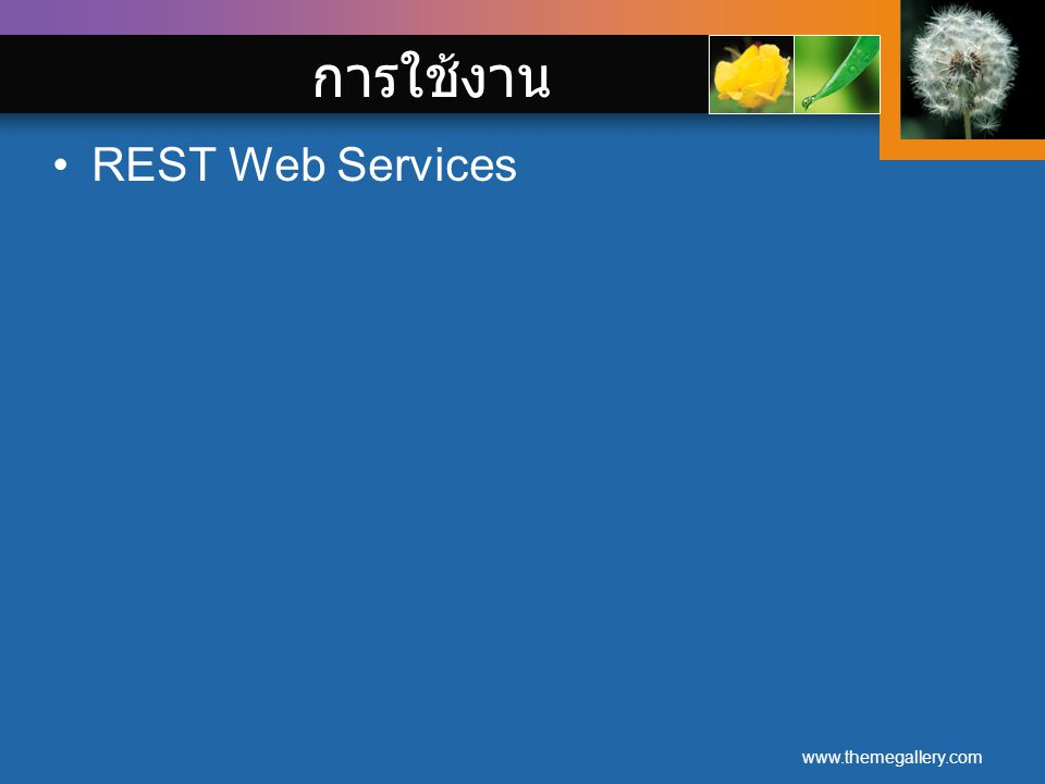 www.themegallery.com การใช้งาน REST Web Services