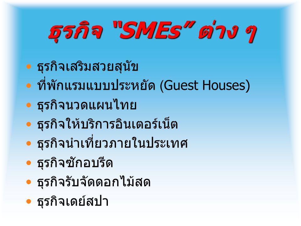 ธุรกิจ SMEs ต่าง ๆ ธุรกิจเสริมสวยสุนัข ที่พักแรมแบบประหยัด (Guest Houses) ธุรกิจนวดแผนไทย ธุรกิจให้บริการอินเตอร์เน็ต ธุรกิจนำเที่ยวภายในประเทศ ธุรกิจซักอบรีด ธุรกิจรับจัดดอกไม้สด ธุรกิจเดย์สปา