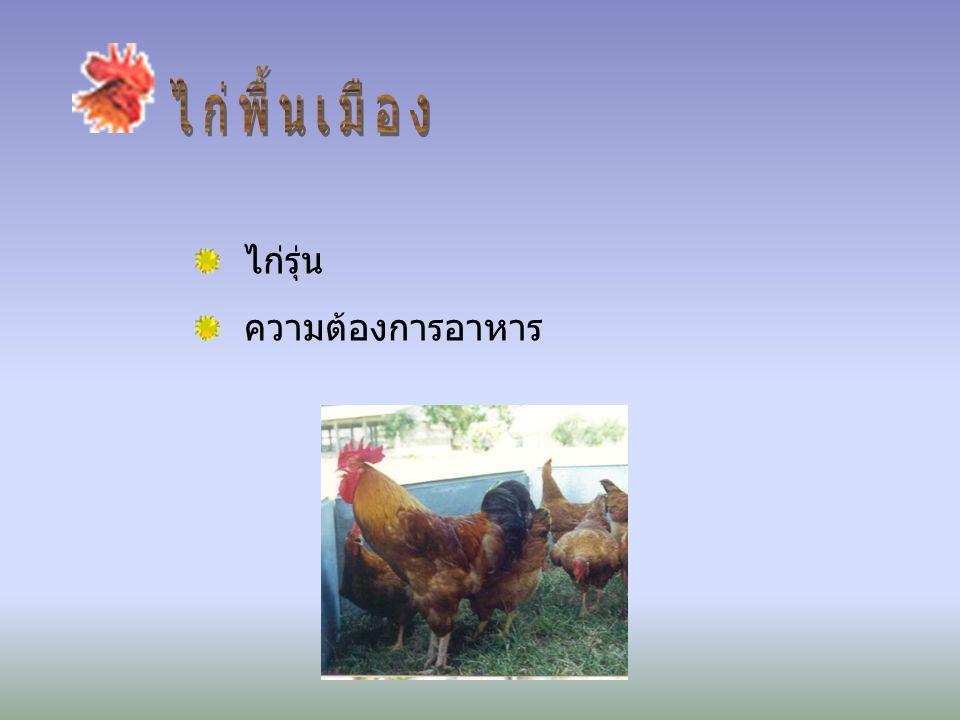 ♣ หลากหลายสายพันธุ์ ♣ กินอาหาร ♣ มาตรฐานโภชนะ