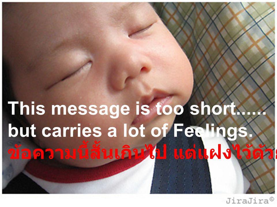 This message is too short...... but carries a lot of Feelings. ข้อความนี้สั้นเกินไป แต่แฝงไว้ด้วยความรู้สึกมากมาย