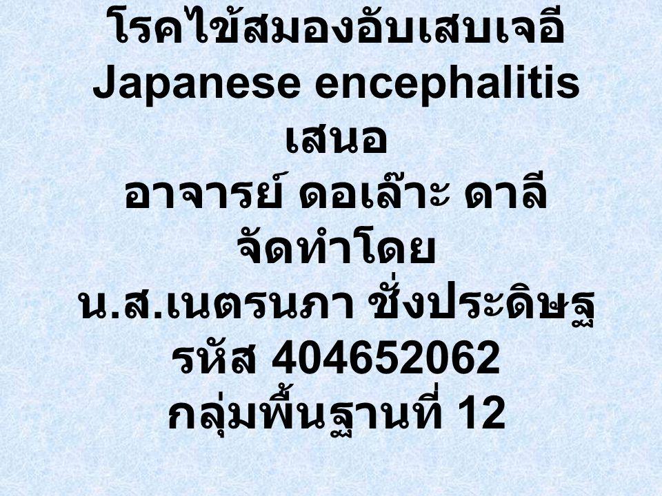 โรคไข้สมองอับเสบเจอี Japanese encephalitis เสนอ อาจารย์ ดอเล๊าะ ดาลี จัดทำโดย น.