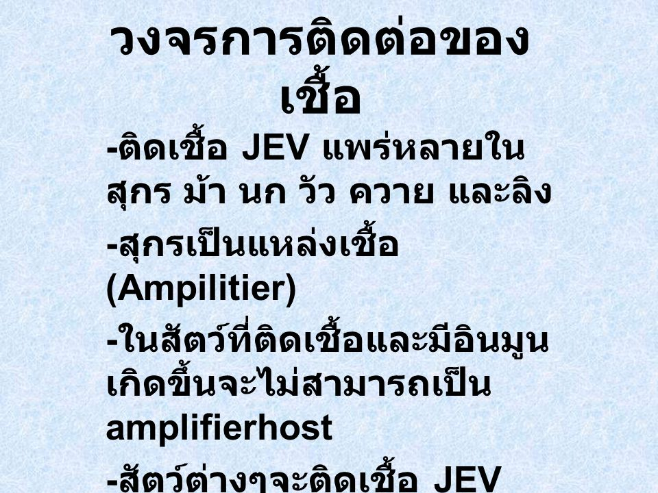 วงจรการติดต่อของ เชื้อ - ติดเชื้อ JEV แพร่หลายใน สุกร ม้า นก วัว ควาย และลิง - สุกรเป็นแหล่งเชื้อ (Ampilitier) - ในสัตว์ที่ติดเชื้อและมีอินมูน เกิดขึ้นจะไม่สามารถเป็น amplifierhost - สัตว์ต่างๆจะติดเชื้อ JEV โดยไม่ปรากฎอาการยกเว้น ในสัตว์ตั้งท้อง