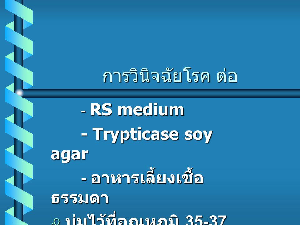 การวินิจฉัยโรค ต่อ - RS medium - Trypticase soy agar - อาหารเลี้ยงเชื้อ ธรรมดา  บ่มไว้ที่อุณหภูมิ 35-37 องศา นาน 18-24 ชั่วโมง