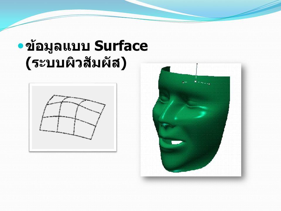 ข้อมูลแบบ Surface ( ระบบผิวสัมผัส )
