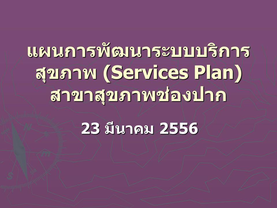 แผนการพัฒนาระบบบริการ สุขภาพ (Services Plan) สาขาสุขภาพช่องปาก 23 มีนาคม 2556