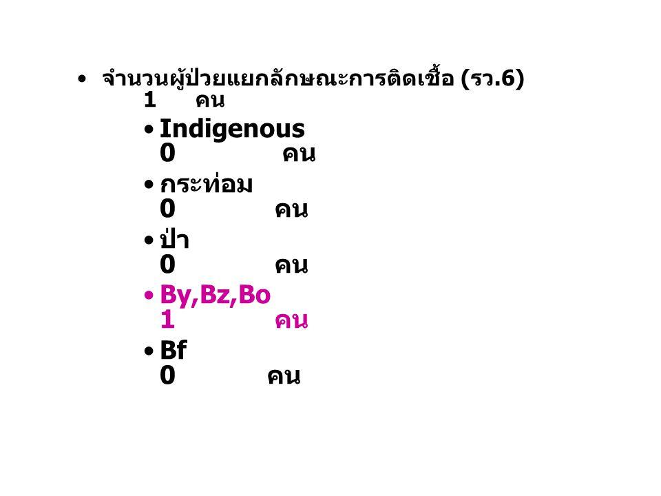 จำนวนผู้ป่วยแยกลักษณะการติดเชื้อ (รว.6) 1 คน Indigenous 0 คน กระท่อม 0 คน ป่า 0 คน By,Bz,Bo 1 คน Bf 0 คน