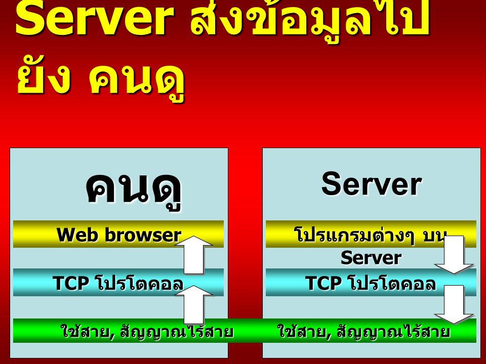 Server ส่งข้อมูลไป ยัง คนดู Web browser TCP โปรโตคอล ใช้สาย, สัญญาณไร้สาย โปรแกรมต่างๆ บน Server TCP โปรโตคอล ใช้สาย, สัญญาณไร้สาย คนดู Server