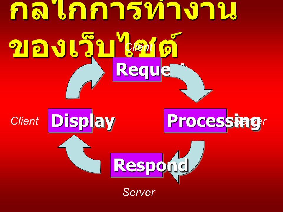 กลไกการทำงาน ของเว็บไซต์ RequestRequest ProcessingProcessing RespondRespond DisplayDisplay Client Server Client