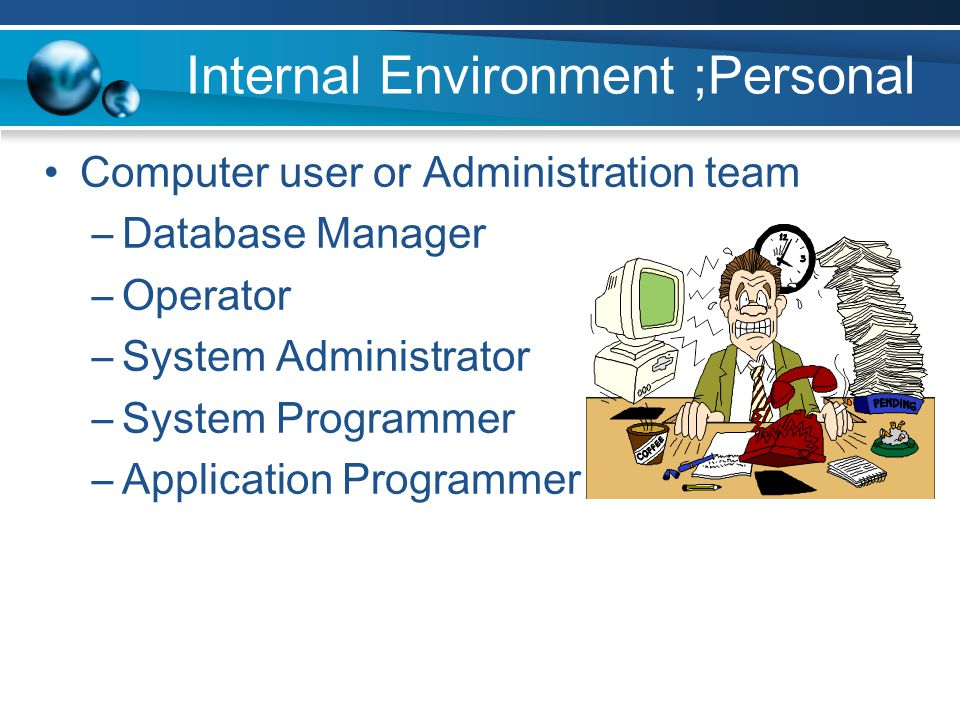 Internal Environment ;Personal Computer user or Administration team –Database Manager –Operator –System Administrator –System Programmer –Application Programmer
