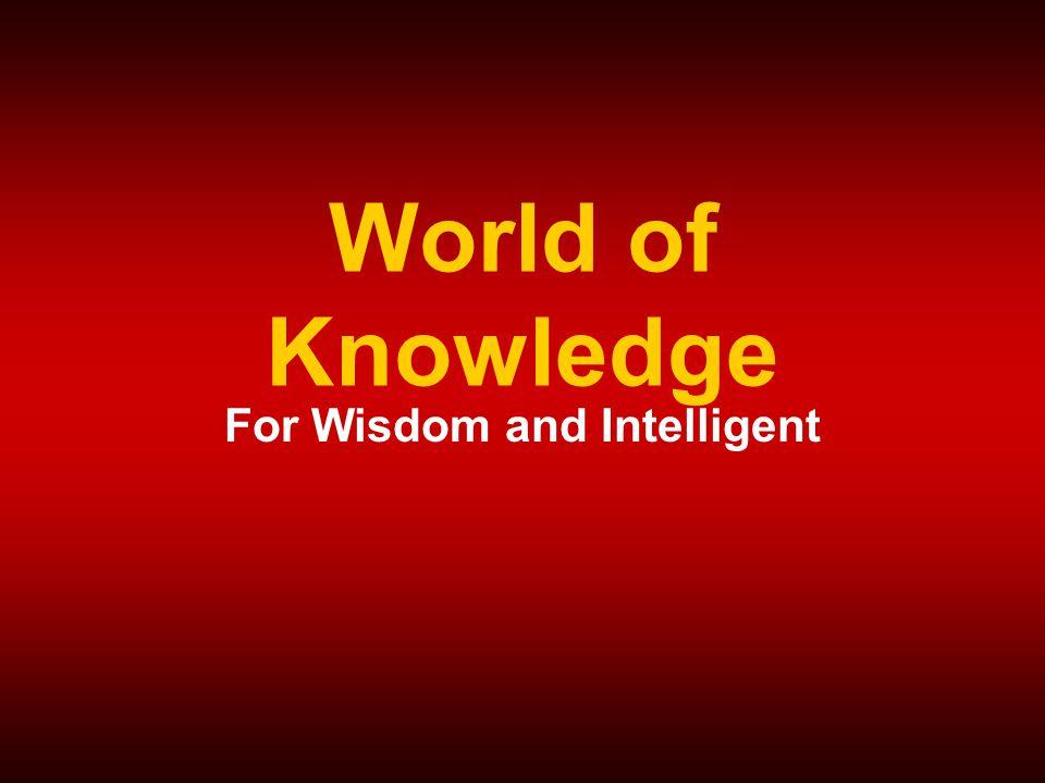 MK315Kulachatrakul@yahoo.com18 Intelligent Wisdom ลำดับขั้นการเจริญเติบโตของ ข้อมูลสู่ภูมิปัญญา
