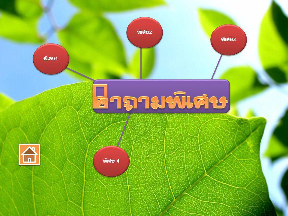 1.ฤดูฝนในประเทศไทย เกิดจากอิทธิพลของลม อะไร? คำถามพิเศษ