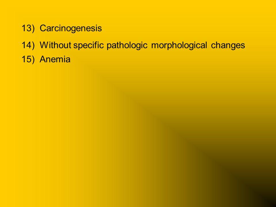 13)Carcinogenesis 14)Without specific pathologic morphological changes 15)Anemia