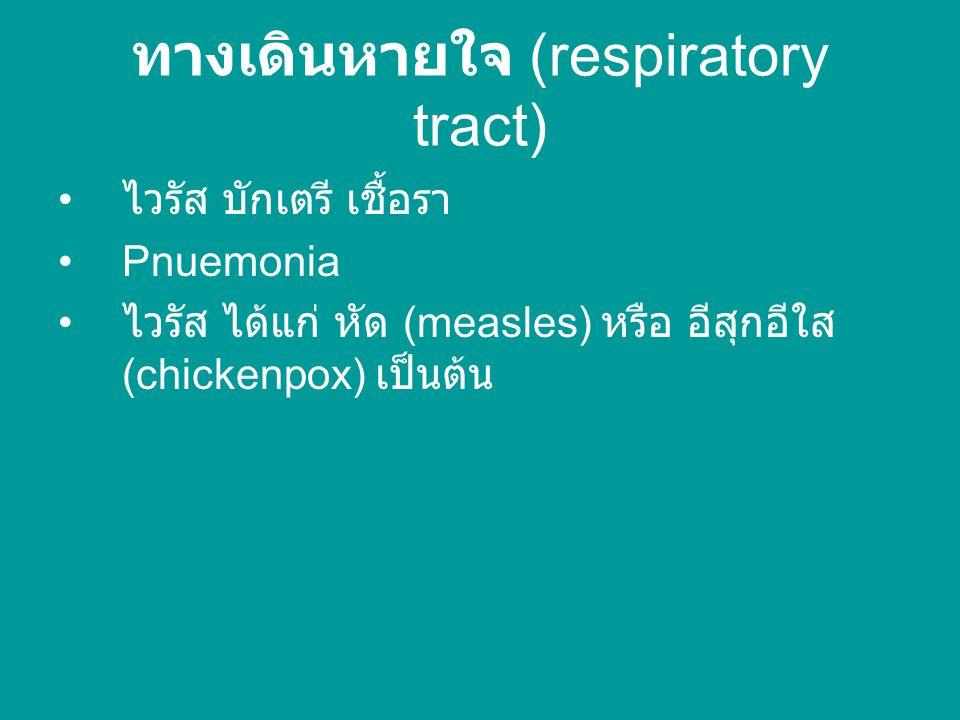 ทางปาก (oral) ไข่หรือตัวอ่อนระยะติดต่อ บักเตรี ( เช่น Salmonella typhi ) hepatitis A และ E viruses, poliovirus และ rotavirus เป็นต้น น้ำลายของผู้ป่วย เช่น เชื้อ HIV, herpesviruses และ mumps viruses เป็นต้น