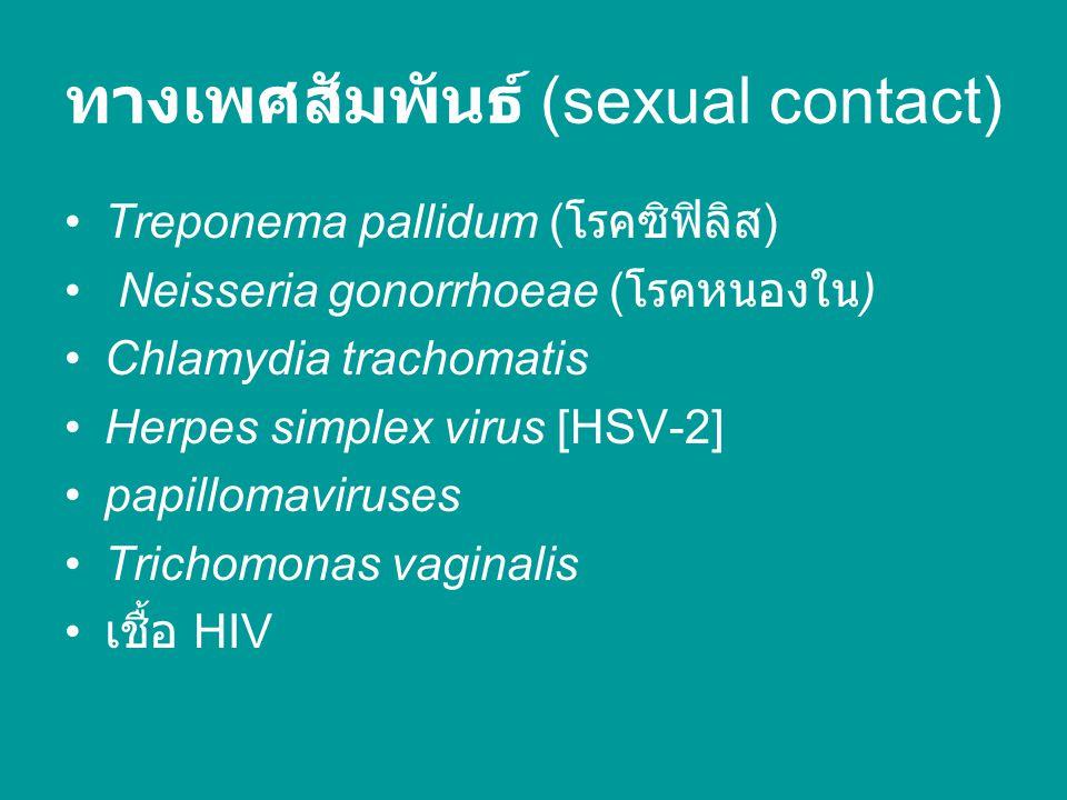 ทางเพศสัมพันธ์ (sexual contact) Treponema pallidum ( โรคซิฟิลิส ) Neisseria gonorrhoeae ( โรคหนองใน ) Chlamydia trachomatis Herpes simplex virus [HSV-