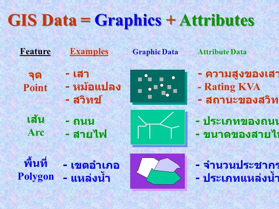 GIS DATA Spatial or Graphic พื้นที่ = 204.56 ตร. กม. ประชากร = 20,000 คน พื้นที่เพาะปลูก = นาข้าว : Attribute