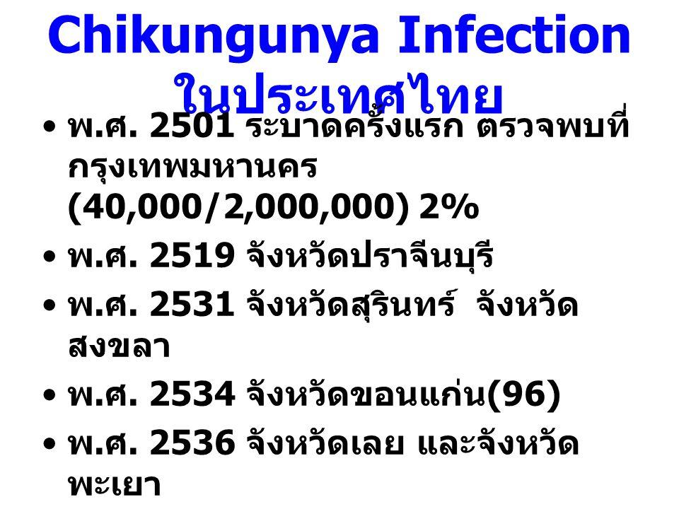 Chikungunya Infection ในประเทศไทย พ. ศ. 2501 ระบาดครั้งแรก ตรวจพบที่ กรุงเทพมหานคร (40,000/2,000,000) 2% พ. ศ. 2519 จังหวัดปราจีนบุรี พ. ศ. 2531 จังหว