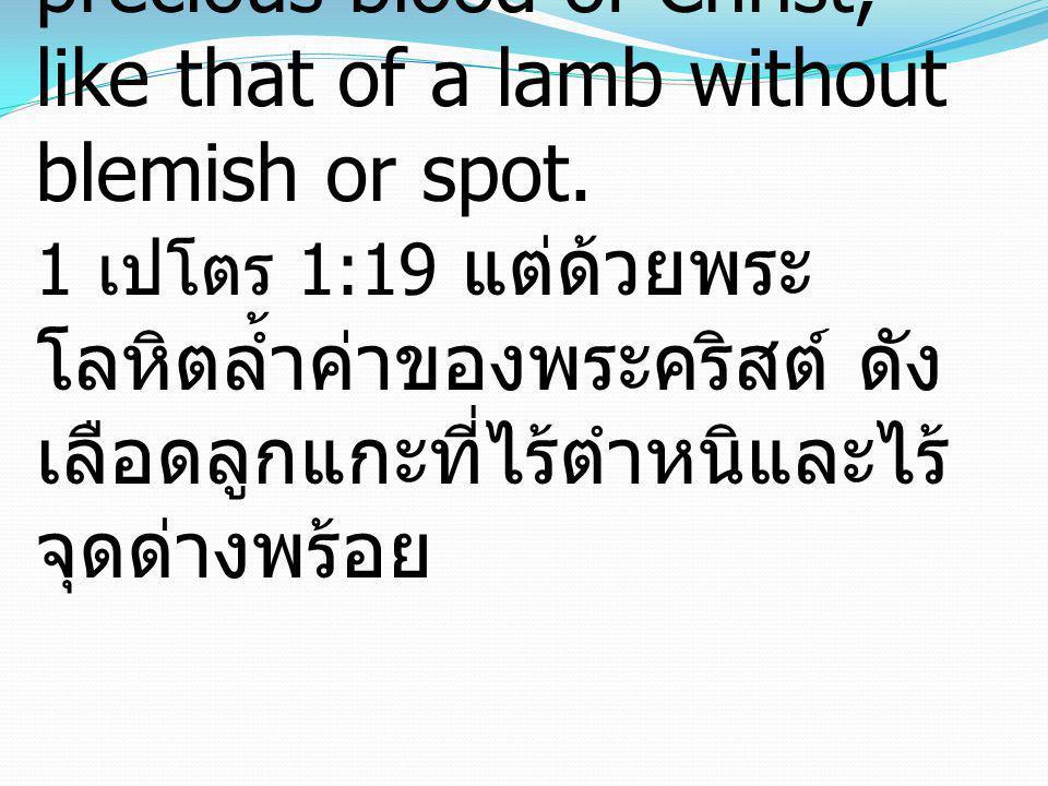 I Peter 1:19 but with the precious blood of Christ, like that of a lamb without blemish or spot. 1 เปโตร 1:19 แต่ด้วยพระ โลหิตล้ำค่าของพระคริสต์ ดัง