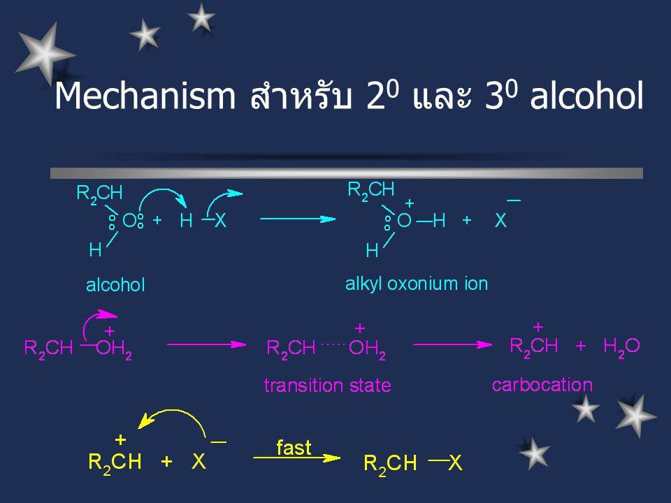 Mechanism สำหรับ 2 0 และ 3 0 alcohol