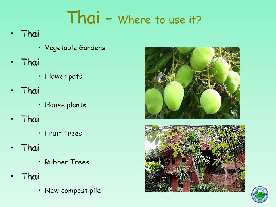 Thai - Where to use it? Thai Vegetable Gardens Thai Flower pots Thai House plants Thai Fruit Trees Thai Rubber Trees Thai New compost pile