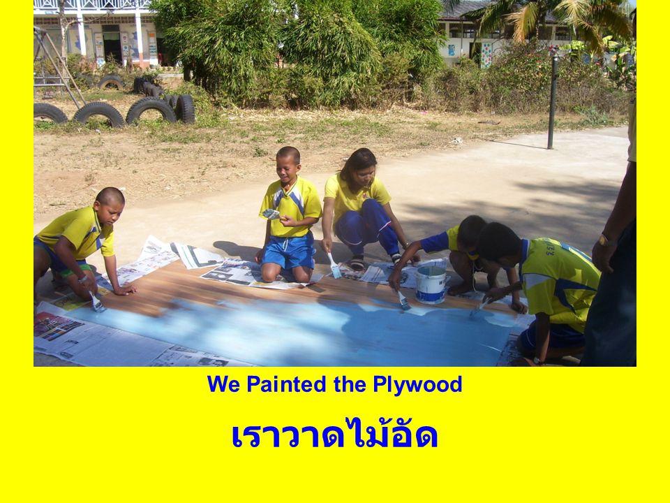 We Painted the Plywood เราวาดไม้อัด