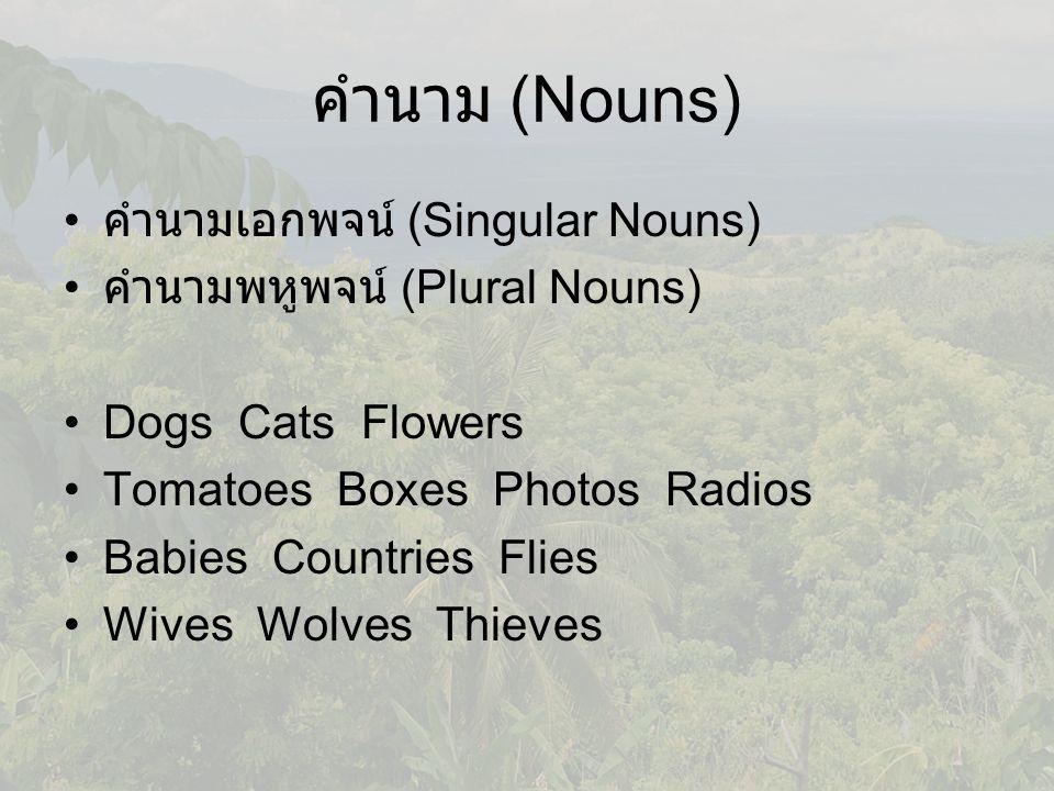 คำนาม (Nouns) คำนามเอกพจน์ (Singular Nouns) คำนามพหูพจน์ (Plural Nouns) Dogs Cats Flowers Tomatoes Boxes Photos Radios Babies Countries Flies Wives Wolves Thieves