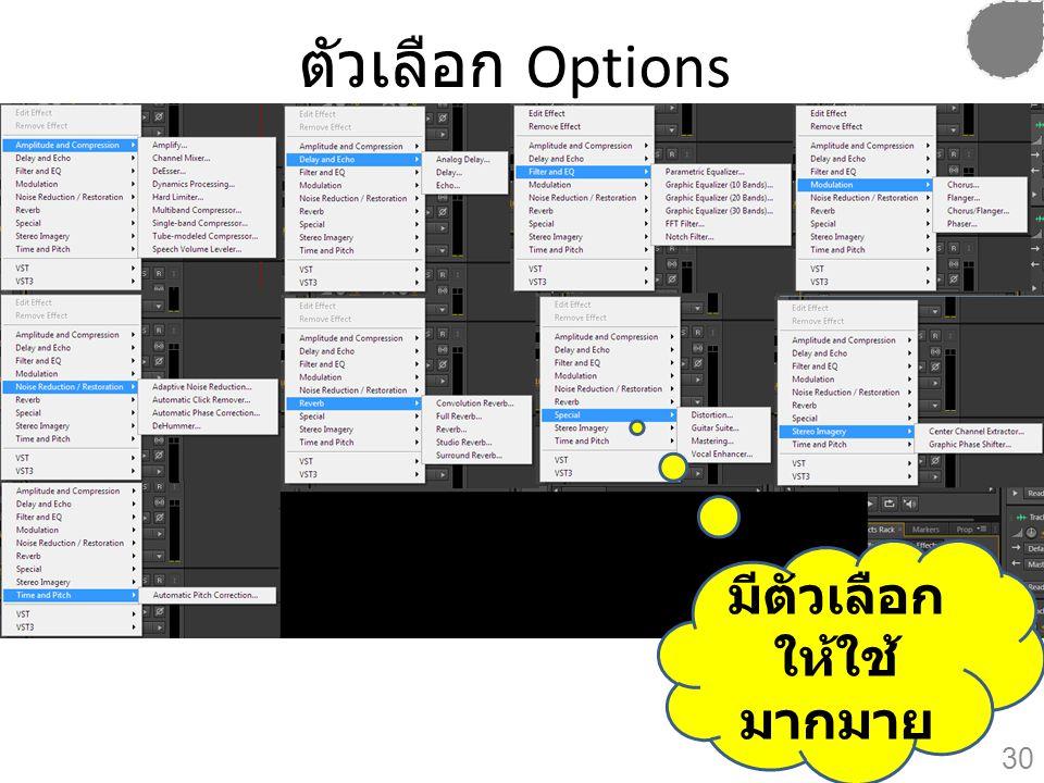 ตัวเลือก Options มีตัวเลือก ให้ใช้ มากมาย 30