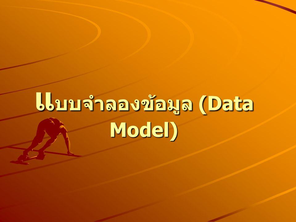 แ บบจำลองข้อมูล (Data Model)