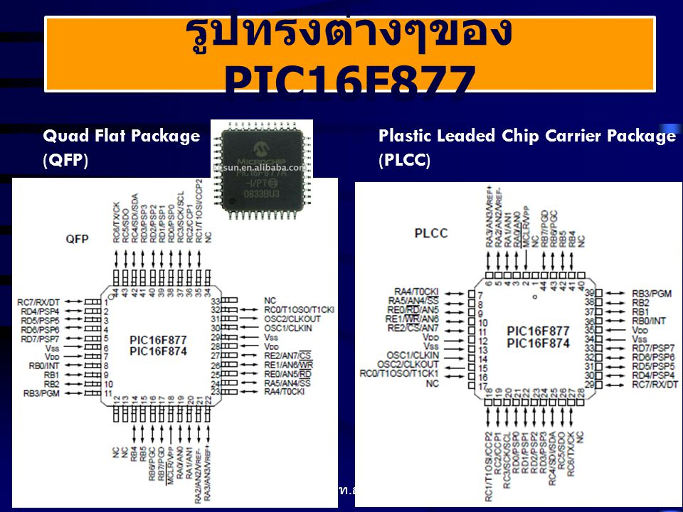  Quad Flat Package (QFP)  Plastic Leaded Chip Carrier Package (PLCC) รูปทรงต่างๆของ PIC16F877 11 ELectronic วท.