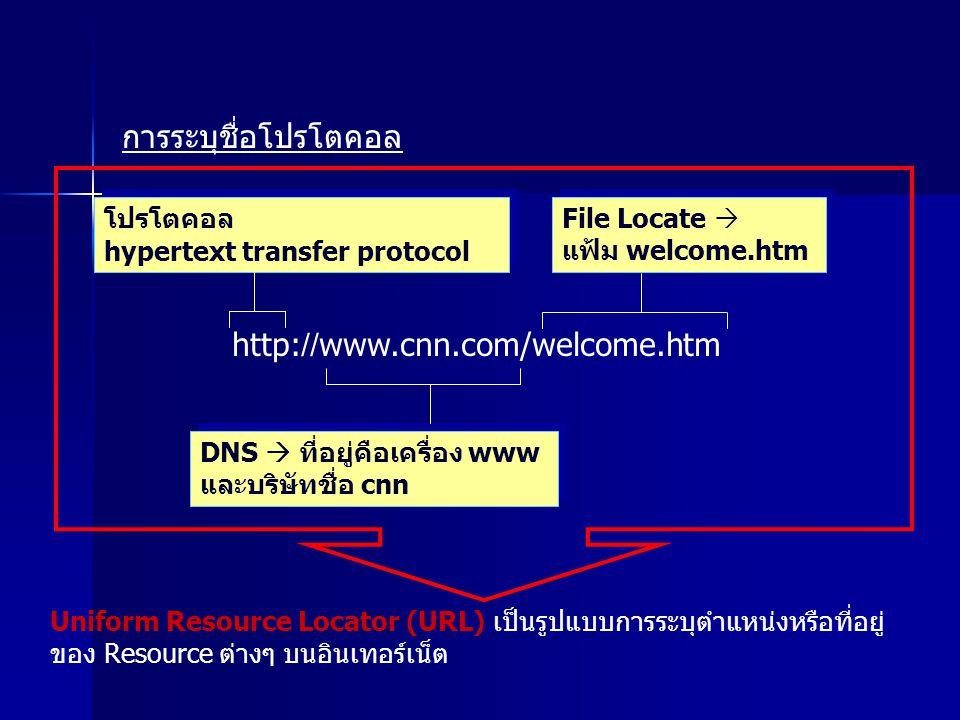 โปรโตคอล hypertext transfer protocol โปรโตคอล hypertext transfer protocol DNS  ที่อยู่คือเครื่อง www และบริษัทชื่อ cnn DNS  ที่อยู่คือเครื่อง www และบริษัทชื่อ cnn File Locate  แฟ้ม welcome.htm File Locate  แฟ้ม welcome.htm http://www.cnn.com/welcome.htm การระบุชื่อโปรโตคอล Uniform Resource Locator (URL) เป็นรูปแบบการระบุตำแหน่งหรือที่อยู่ ของ Resource ต่างๆ บนอินเทอร์เน็ต