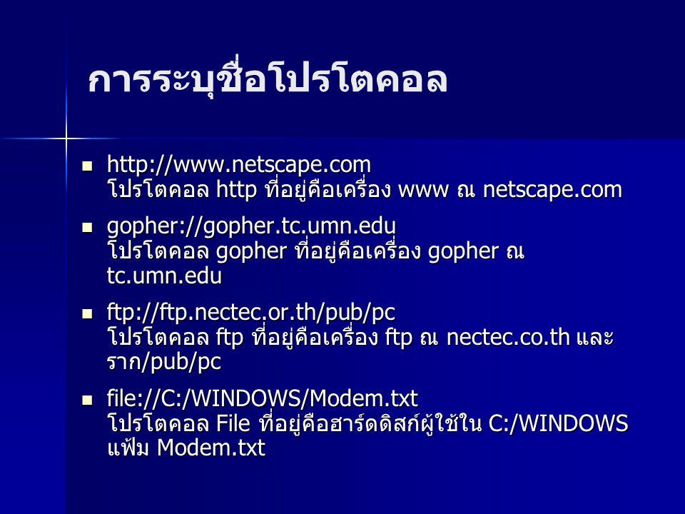 http://www.netscape.com โปรโตคอล http ที่อยู่คือเครื่อง www ณ netscape.com http://www.netscape.com โปรโตคอล http ที่อยู่คือเครื่อง www ณ netscape.com gopher://gopher.tc.umn.edu โปรโตคอล gopher ที่อยู่คือเครื่อง gopher ณ tc.umn.edu gopher://gopher.tc.umn.edu โปรโตคอล gopher ที่อยู่คือเครื่อง gopher ณ tc.umn.edu ftp://ftp.nectec.or.th/pub/pc โปรโตคอล ftp ที่อยู่คือเครื่อง ftp ณ nectec.co.th และ ราก/pub/pc ftp://ftp.nectec.or.th/pub/pc โปรโตคอล ftp ที่อยู่คือเครื่อง ftp ณ nectec.co.th และ ราก/pub/pc file://C:/WINDOWS/Modem.txt โปรโตคอล File ที่อยู่คือฮาร์ดดิสก์ผู้ใช้ใน C:/WINDOWS แฟ้ม Modem.txt file://C:/WINDOWS/Modem.txt โปรโตคอล File ที่อยู่คือฮาร์ดดิสก์ผู้ใช้ใน C:/WINDOWS แฟ้ม Modem.txt การระบุชื่อโปรโตคอล
