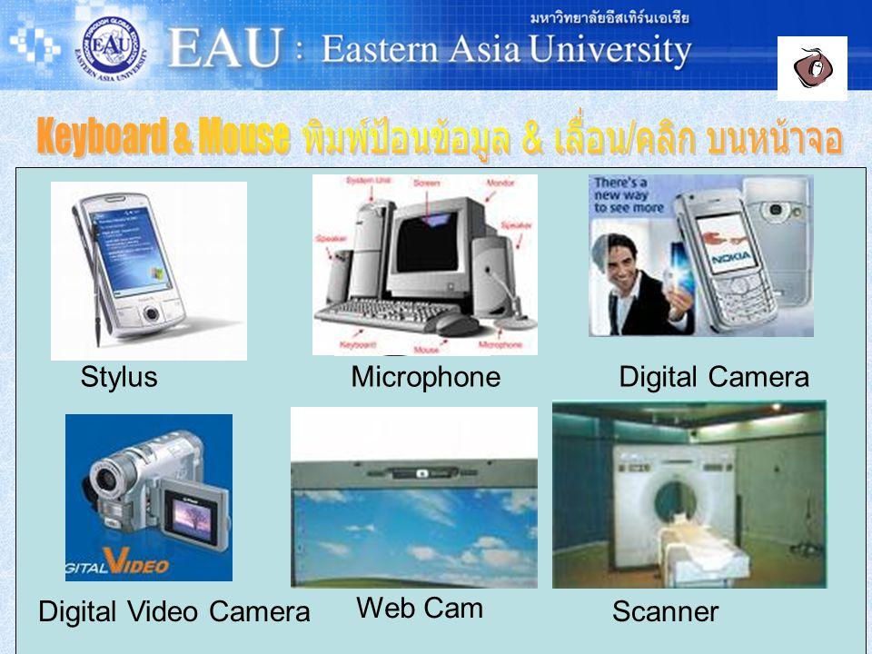 Touch Screen Joystick Light Pen Stylus Microphone Digital Camera Digital Video Camera Web Cam Scanner