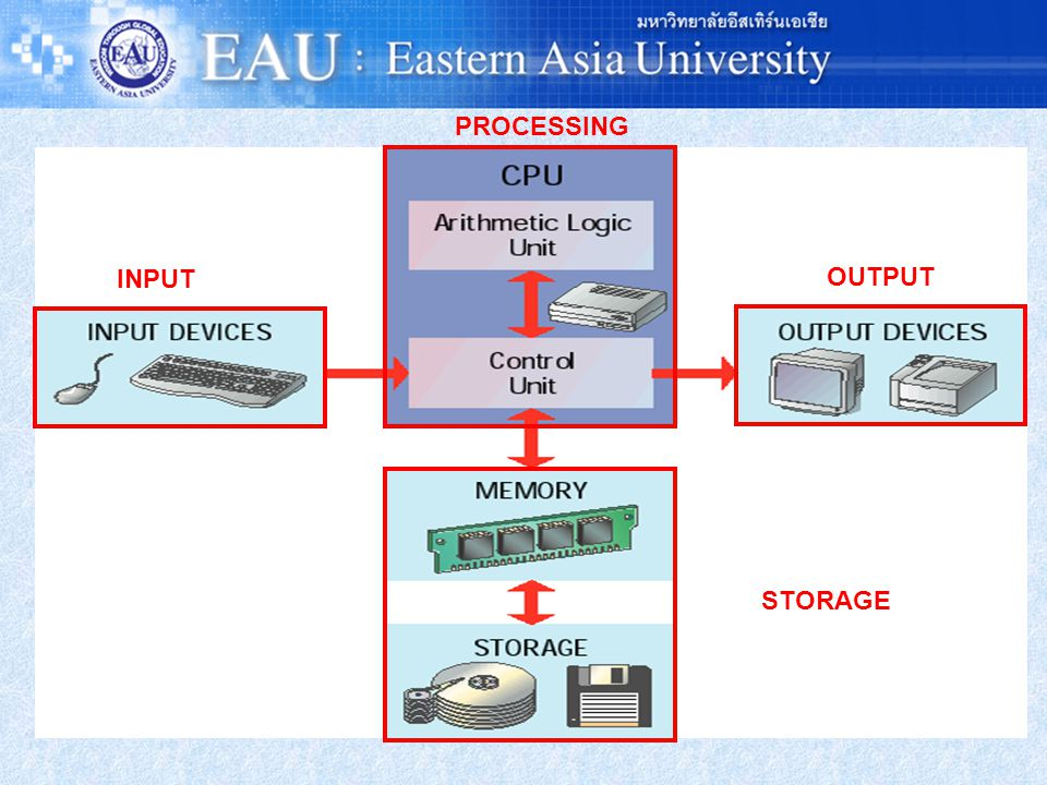 PROCESSING INPUT OUTPUT STORAGE