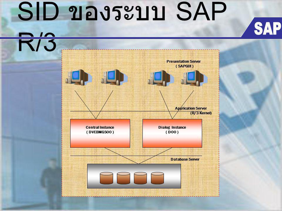SID ของระบบ SAP R/3 Central Instance ( DVEBMGSOO ) Database Server Application Server (R/3 Kernel) Presentation Server ( SAPGUI ) Dialog Instance ( DO